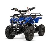 ECOXTREM Quad Kinder Elektro Kinder Motor 800W Batterie 36V Geschwindigkeit bis 25km/h Laufzeit bis...