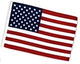 Fahne Flagge USA 30 x 45 cm
