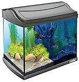 Tetra AquaArt Discovery Line LED Aquarium-Komplett-Set 20 Liter anthrazit (inklusive...