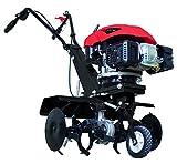 Scheppach 5912306903 Benzin-Motorhacke