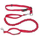 Pawaboo elastisch Hunde Jogging Leine mit Bauchgurt, 120cm Premium Reflektierend Hundeleine...