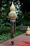 Anfang/Hulusi Natürliche Kürbisflasche Gourd robustem Bambus Flöte spielen Wind Muscial...