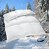 Extra warme 100% Winter Bettdecke 1250g sibirische Daunen Daunenbett 135x200 cm