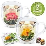 Teabloom Twin Harmony Doppelwandige Glasbecher & Blühende Teeblumen (Set mit 2 Tassen + 2...