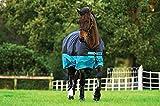 Horseware Amigo Mio Turnout Lite ohne Füllung Regendecke Black & Turquoise 115-160 (130)
