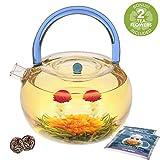 Teabloom Teekanne Blue Rainbow Wasserkocher im Set - 1200 ml Borosilikatglas Teekanne - Glaskessel -...