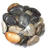 Unbekannt Deko-Steine im Netz - bunt - 1 kg - Zierkiesel/Natursteine - verschiedene Körnungen...