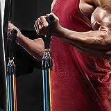 SueH Design, Fitnessbänder für Übung, Widerstandsbänder für Heimtraining, Gymnastikbänder mit...