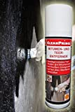 BITUMEN- UND TEER ENTFERNER 0,3 Liter 300 ml Teerentferner Reiniger Teer Bitumen Öl Fett...