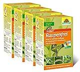 Neudorff Raupenfrei Xentari 25g gegen Buchsbaumzünsler an Buchsbäumen