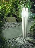 Tourwell Vertrieb Solarleuchte mit Bewegungsmelder Solar Gartenleuchte Glas Edelstahl 56 cm  ...