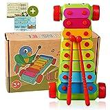 Tabalino  Xylophon für Kinder  Glockenspiel, Instrument zur musikalischen Früherziehung  inkl....
