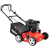 HECHT Benzin-Vertikutierer 5675 Rasen-Lüfter Motorvertikutierer (6,5 PS, 42 cm Arbeitsbreite,...