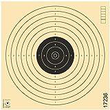 Zielscheiben Schießscheiben ISSF Softair Luftpistole Luftgewehr Kleinkaliber Spezialkarton 17x17cm...
