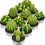 12 Stücke Kaktus Teelicht Kerzen Handgefertigt Zart Saftig Kaktus Kerzen für Party Hochzeit Spa...
