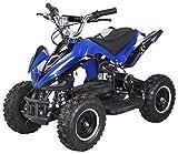 Actionbikes Motors Mini Elektro Kinder Racer 800 Watt ATV Pocket Quad Kinderquad Kinderfahrzeug......