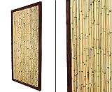 bambus-discount.com Bambuszaun KohSamui Klassik 180x90cm, dunkler Rahmen mit Bambusrohr Füllung...