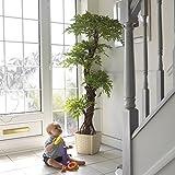 Stilvoller künstlicher Baum & Pflanzen, Der Japanese Fruticosa Tree ist eine wunderschöner...