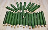 25 Rollen Wickeldraht grün Blumendraht Bindedraht a 100g 0,65mm 2,5kg