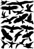 EAST-WEST Trading GmbH Vogelaufkleber für Fenster, Wintergärten, Glashäuser zum Vogelschutz,...