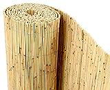 Schilfrohrmatten Premium 'Beach', 200 hoch x 600cm breit, ein Produkt von bambus-discount -...