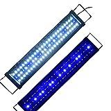 Aquarien Eco LED Aquarium Beleuchtung Aufsetzleuchte Blau Weiß Aquariumleuchte Lampe (60cm 15W)A046