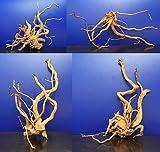 Rote Moorwurzel/Moorkienholz, Gr. L Traumwurzel 40-50cm