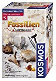 Kosmos 630461 - Ausgrabungsset Fossilien