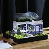 Acryl Mini Micro Landschaft Aquarium Büro Schreibtisch Kleine Persönliche Ökologie...