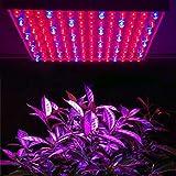 MVPower® 225 LEDs Pflanzenleuchte Pflanzenlampe, 240V, 900lm,15W, Blau Rot Licht für...