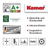 Komar - Fototapete AUDI R8 LE MANS - 368 x 254 cm - Tapete, Wand, Dekoration, Wandbelag, Wandbild,...