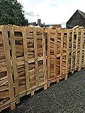 800 Kg Brennholz Kaminholz reine Buche sauber auf der Palette geliefert Kaminholz in 25 cm Länge -...