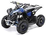 Actionbikes Motors Mini Kinder Elektro Quad ATV RENEBLADE 1000 Watt Pocket Quad - Original Saefty...