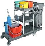 CleanSv Servicewagen Reinigungswagen Kunststoff komplett mit 2 x 17 l Eimer und Mopppresse, 4 x ca....