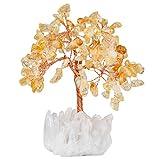 mookaitedecor Trommelsteine & Cluster Basis Heilkristall Geldbaum Edelstein Feng Shui Baum des...