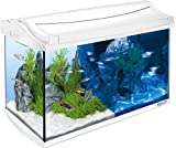 Tetra AquaArt LED Aquarium-Komplett-Set, 60 L, weiß
