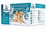 Welpen Hunde Trainingsunterlagen für Welpen Puppy Pads (100 Stück) von PetCellence | Welpenhaus...