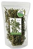 berryz CBD Hanf Buds / Große Blüten / Knospen + Hanftee aus Cannabis Sativa ( THC