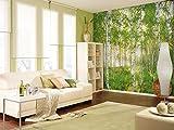 Komar - Vlies Fototapete SUNDAY - 368 x 248 cm - Tapete, Wand, Dekoration, Wandbelag, Wandbild,...