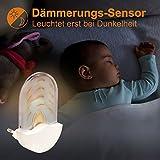 Briloner Leuchten - Bernstein LED Nachtlicht für Kinderzimmer / stromsparend durch...
