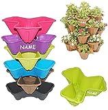 1 Stück _ Blumentopf - bunte Farben - für 3 Pflanzen - STAPELBAR - incl. Name - Blumenkübel /...