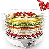 Meykey Dörrautomat mit Temperaturregler, Dörrgerät für Lebensmittel, Obst- Fleisch-...