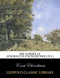 Die Sardelle (Engraulis encrasicholus L)