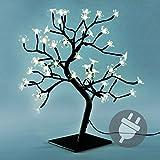 Nipach GmbH 48 LED Baum mit Blüten Blütenbaum Lichterbaum warm weiß 45 cm hoch Trafo IP20...