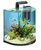 Tetra AquaArt Explorer Line Aquarium Komplett-Set 60 Liter anthrazit (gewölbte Frontscheibe,...