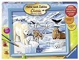 Ravensburger 28422 - Tiere der Arktis - Malen nach Zahlen, 30 x 24 cm
