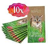 PRETTY KITTY 10x Premium Katzengras Samen von PrettyKitty, 10 Beutel Set mit Saatmischung für 100...