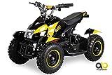 Mini Elektro Kinder ATV Cobra 800 Watt Pocket Quad (rot)