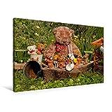 Premium Textil-Leinwand 90 cm x 60 cm quer, Garten-Bär | Wandbild, Bild auf Keilrahmen, Fertigbild...