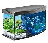Tetra AquaArt Evolution Line LED Aquarium-Komplett-Set 100 Liter anthrazit (moderne LED Beleuchtung,...